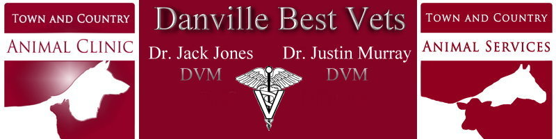 Danville Best Vets - Kentucky Veterinarian Dogs Cats Horses Cattle
